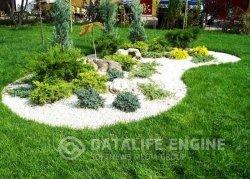 Чем покрыть двор